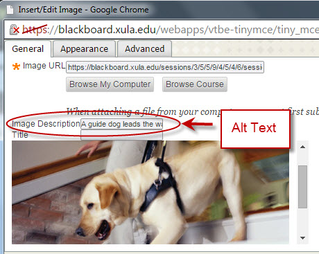 example of alt text in Content Editor