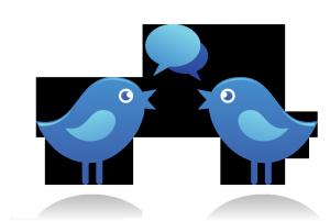 Two bluebirds conversing